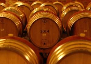 Un Osservatorio sul vino fornisce informazioni utili ad aziende, cantine e produttori