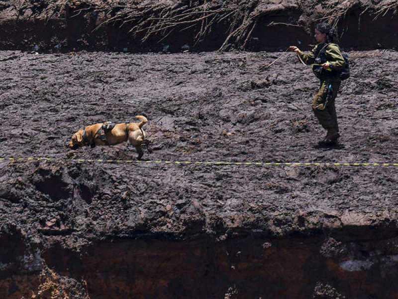عداد المفقودين في البرازيل يصل إلى 115 قتيلا و 248 في عداد المفقودين