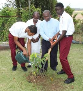 Zion Clarke, Richard Miller, Principal John Mascoll and Tashawn Bushell planted the tree.