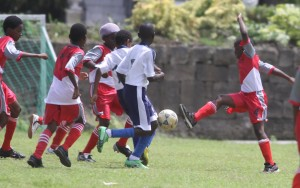 Welches Primary's Harvey Briscoe (right) trying to get in a shot against West Terrace Primary.