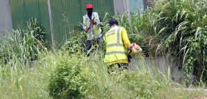 Work being done by teams in Brathwaite's Gap.
