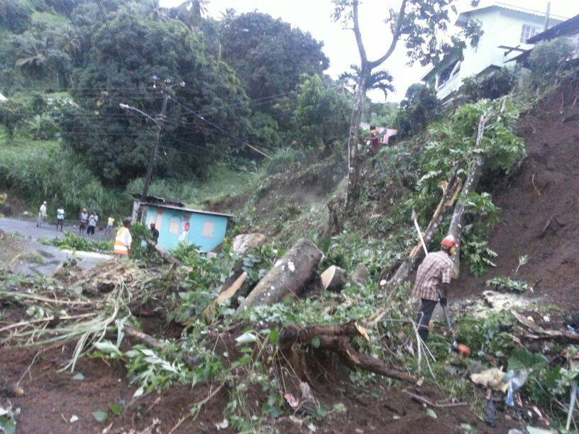 Workers from the Forestry Department try to cut up this tree which blocked the road after landslide. (Photo: NEMO)