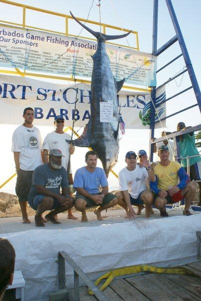 Crews will be seeking to break the 507 pound Blue Marlin record tomorrow.