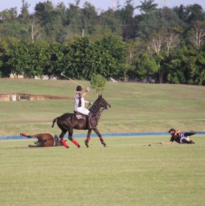 Oliver Williams takes a tumble during his polo match.