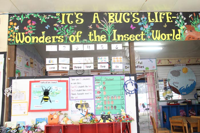 The walls of the classes were decorated with much information on the theme.