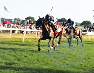 Voldemort winning yesterday's Barbados Derby.