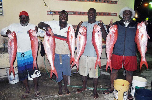 here fishy, fishy, fishy