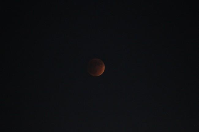 moonX1