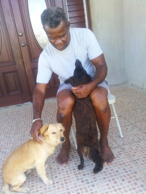 Ainsley Alleyne showing some attention to  Shirley Barrow's dogs.
