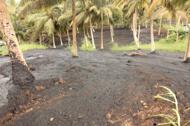 Mount Wilton, St Thomas yesterday morning, where thousands of gallons of contaminated  molasses were dumped.