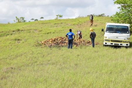 Here, the clean up takes place under the watchful eyes of an environmental health official.