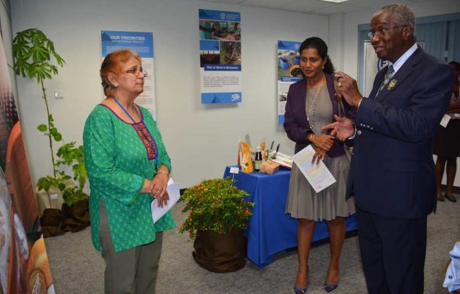 Prime Minister Freundel Stuart in a lively conversation with officer-in-charge of the FAO sub-regional office, Dr Vyjayanthi Lopez, as Minister of Labour Esther Byer-Suckoo listens in during a tour of the UN House exhibition.