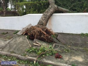 Photos of the damage and flooding caused by Hurricane Nicole in Bermuda on Thursday from Bernews.com.