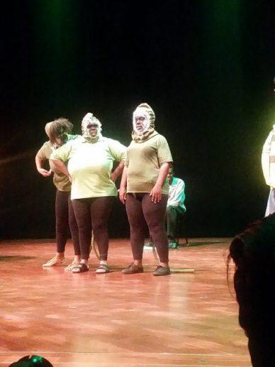 Poenix Performers