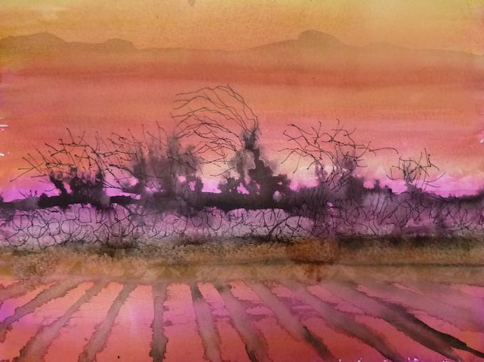 417 sunset hedge watercolo