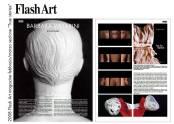 09-flash-art-2008