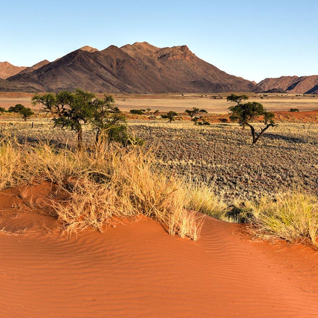 desertlandscape-namibrandnamibia