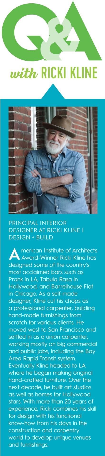 Ricki Kline Interior Designer