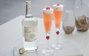 Casamigos Tequila Casa Bellini cocktail recipe