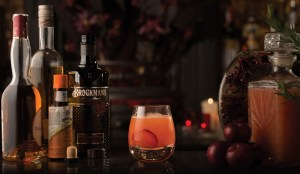brockmans gin plum delicious cocktail recipe