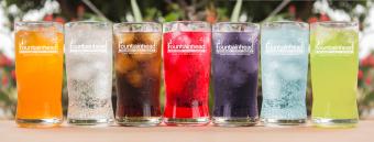 Multi-Flow Beverage Solutions Fountainhead Soda