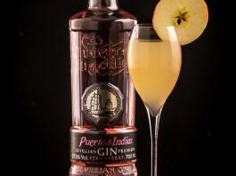 Puerto de Indias Orchard Fizz cocktail recipe