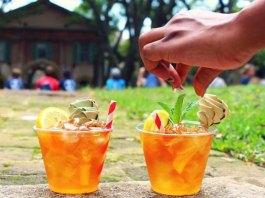 peach mint spritzer cocktail recipe