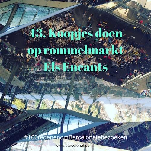43-koopjes-doen-op-rommelmarkt-els-encants