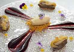 Paars, bloem, bord