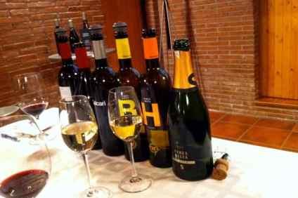 Witte wijn en rode wijn
