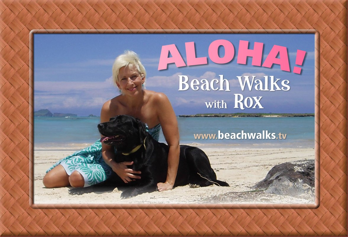 original postcard graphic for beachwalks.tv