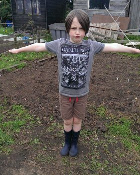 Bean acted as a scarecrow when several big crows descended on our potato patch