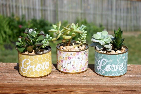 diy planters upcycle