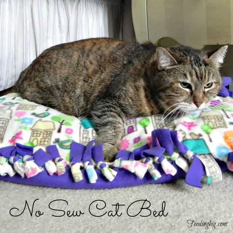no sew cat bed