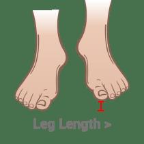 leg-length