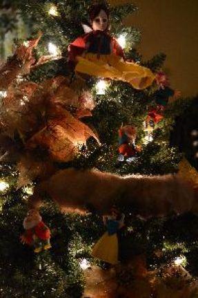 Fur collar in the tree_small