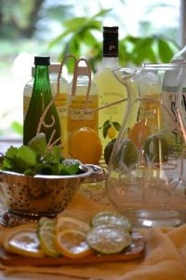 Julies Drunken Spring Lemonade_small