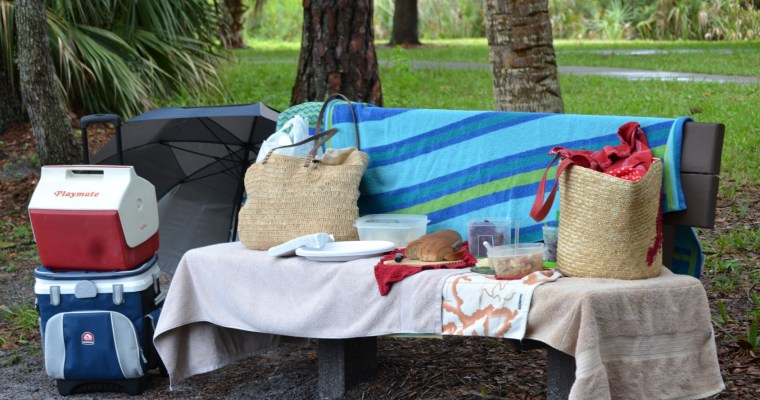 Picnic and Travel Foods