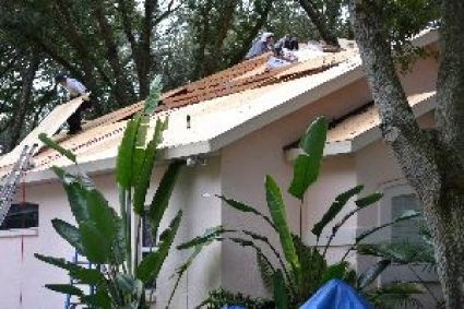 a new roof for us_small