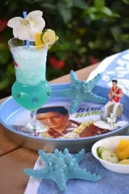 Elvis and Hawaii_small