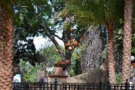 Universal Halloween decorations around_small