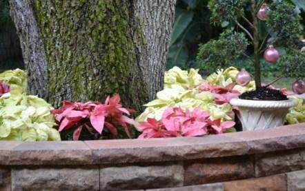 Merry Christmas Blogging