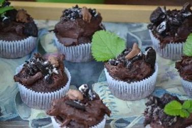 close up of mudcakes_small