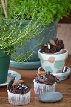 Plants and bug cupcakes_small