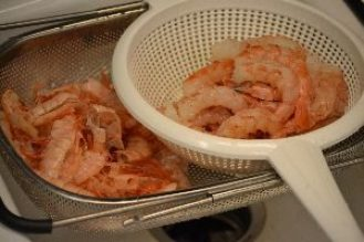 Shrimp washed_small