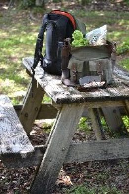 picnic table_small