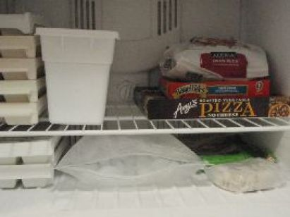 freezer-food_small
