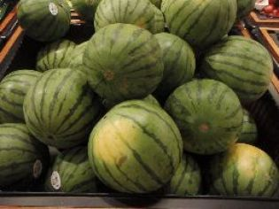 my watermelons_small