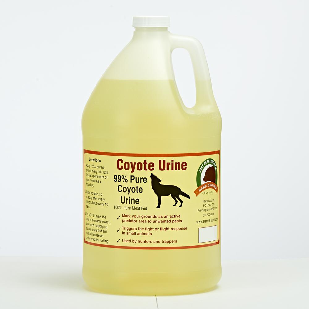 Coyote Urine Predator Scent Gallon