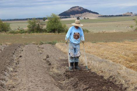 Farmer Tony and his favorite tool, The Broadfork